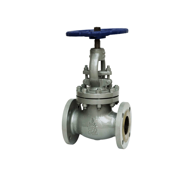 Globe valve made of steel