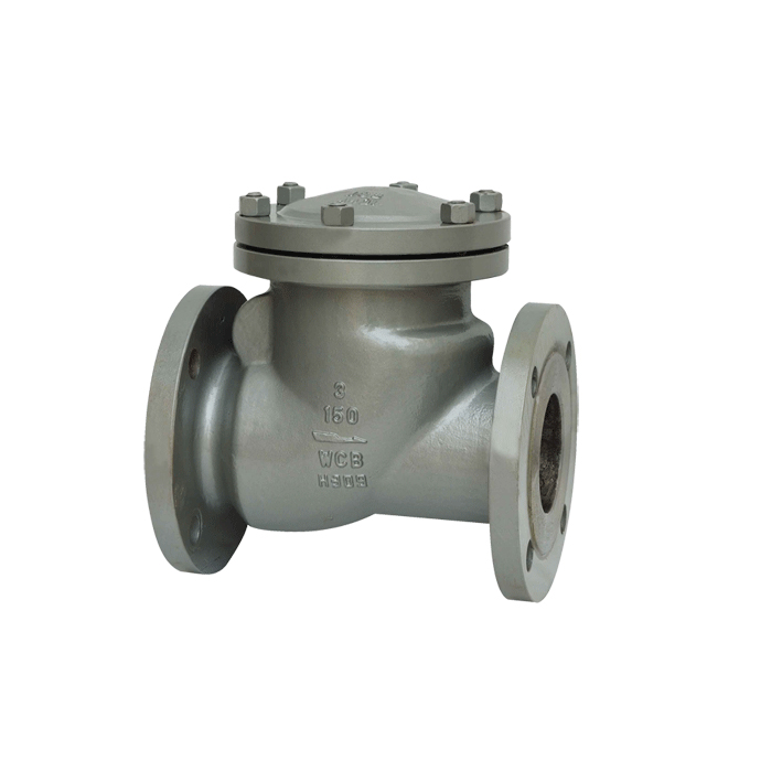 Ball chaeck valve made of steel