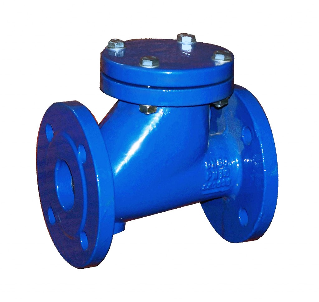Ball check valve made of cast iron