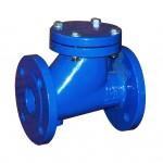Ball check valve made of cast iron